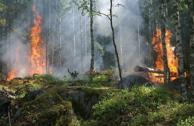 Bollettino di previsione  pericolo incendi del 12 Luglio 2021